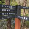 子連れで軽井沢旅行-ご飯食べるなら星野エリアとハルニレテラスは行っといた方がいいよ
